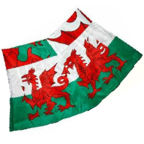 Wales Welsh Flag Gift Wrap Pack