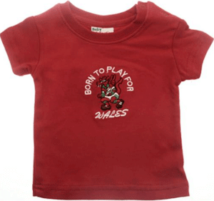 Made in wales t-shirt welsh top